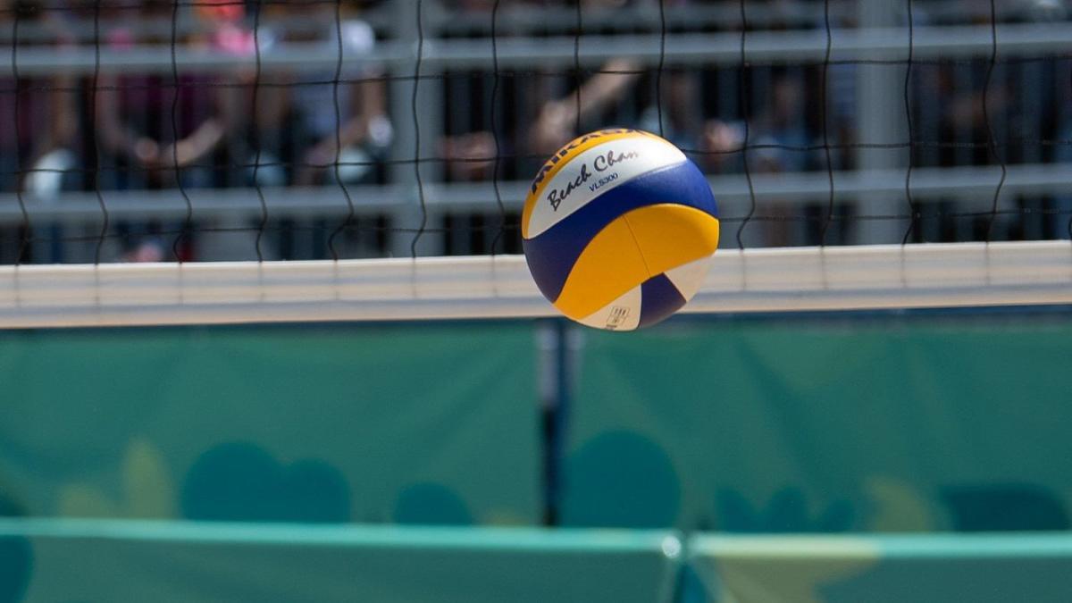 Можно ли заработать на волейболе в ставках?